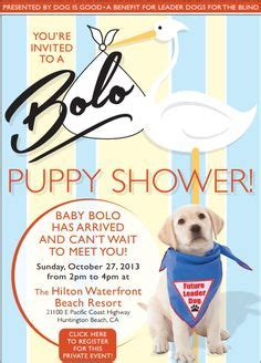 when can you shower a puppy puppy shower ideas on puppy bar and