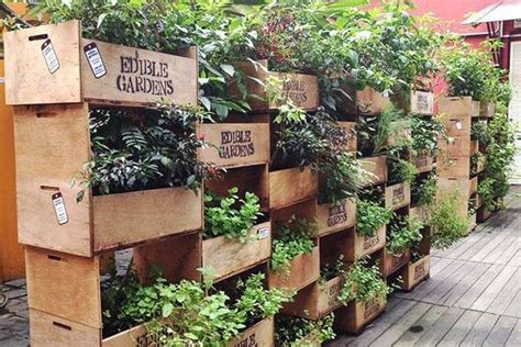 Edible Vertical Garden Pin By El Azarou On Homely