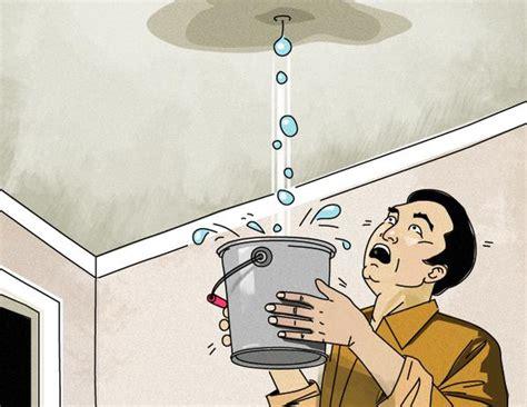 roof leak  attic condensation   fix charm city