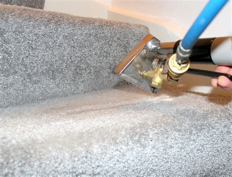 rug washing services carpet cleaning services top carpet cleaners rug cleaning
