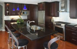 marvelous How To Clean Old Kitchen Cabinets #3: modern_kitchen_renovation_3_g.jpg
