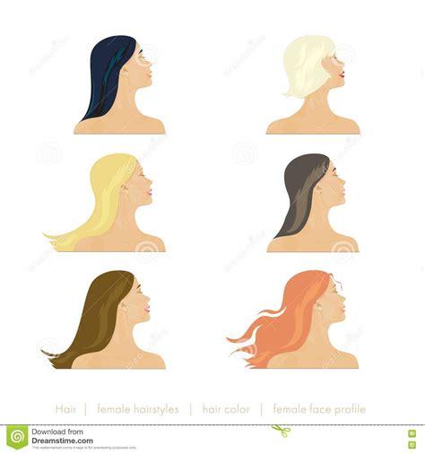 Hairstyles Mannequin by Hairstyles Mannequin Stock Image Cartoondealer 6929977