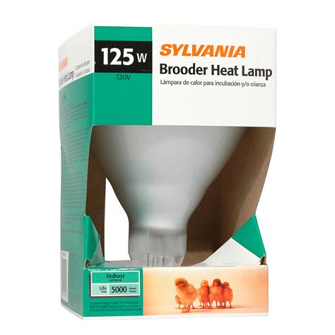 heat l bulb lowes shop sylvania 125 watt indoor dimmable soft white br40