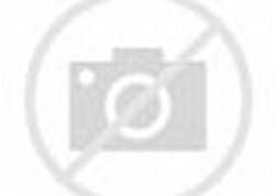 Motor Ninja Rr Modif