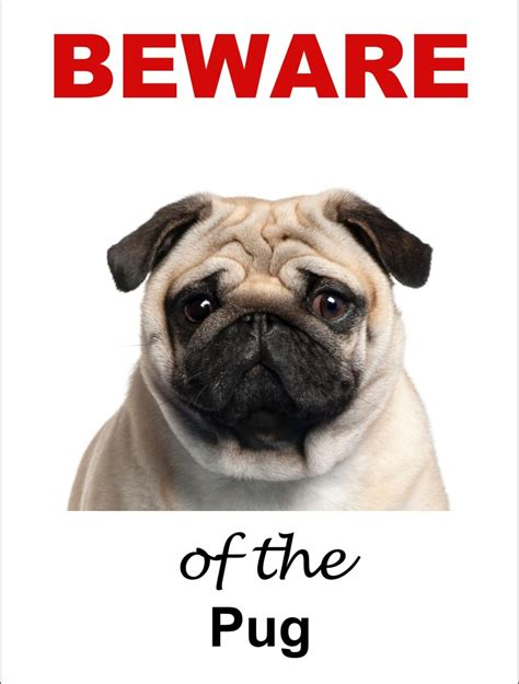pug signs pug signs available in 4 styles ebay