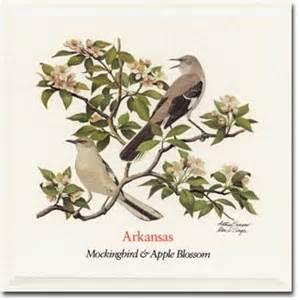 Apple Blossom State Flower - arkansas state flower and bird state flowers and birds