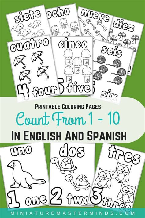 printable numbers 1 100 in spanish spanish numbers 1 100 worksheet printable written