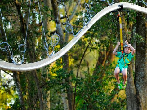 backyard ziplines magical backyard makeovers landscaping ideas and