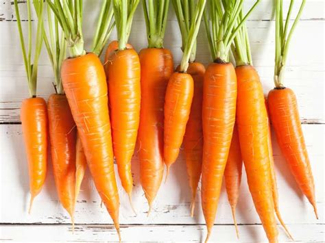 carbohydrates in carrots carrots 101 nutrition facts and health benefits