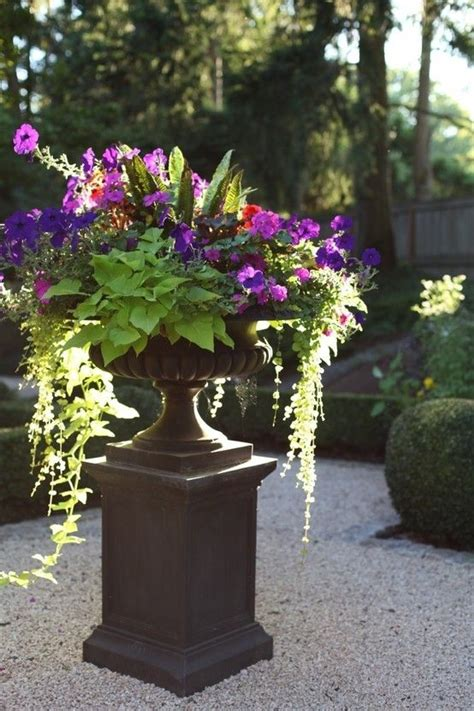 Garden Ridge Urn Planters 21 Best Images About Urn Plantings On