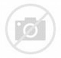 Aishwarya Rai Wedding Mehndi Design