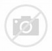 Korean Fashion Dresses for Women