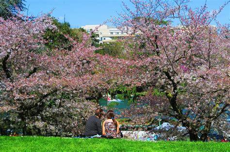 giordano bruno co dei fiori co dei fiori e qui bruci 242 giordano bruno mondovagando