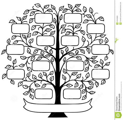 Family Tree Stock Illustrations 25 863 Family Tree Stock Illustrations Vectors Clipart Family Tree Template Vintage Vector Illustration Stock Vector 397284052