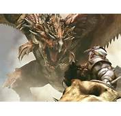 Dragons Lair  Images Gallery Dragon Warrior Fighting A