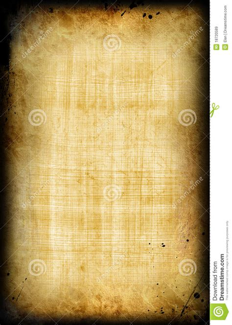 egyptian  papyrus royalty  stock images image