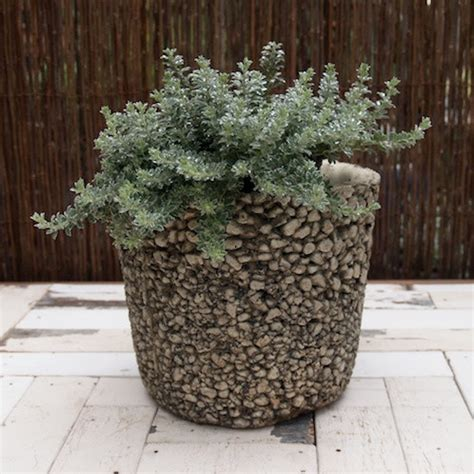 faux bois pebble relief in cast pots eclectic