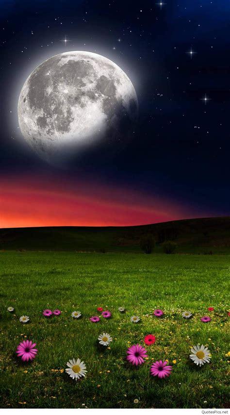 bild natur night nature wallpaper hd  mobile