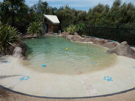 my dog: swimming outdoors at Kepala