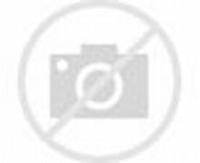 Gambar Kartun One Piece