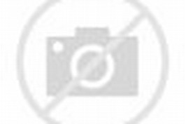 Dew-Covered Ladybug in Morning
