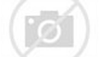 Ladybug Rain After