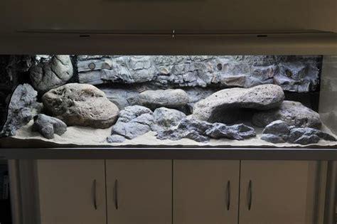 aquarium design kolkata 17 best images about aquarium setups on pinterest
