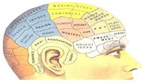 Study My Understanding Of Resources by Ucd Teaching Learning Understanding How Students Learn