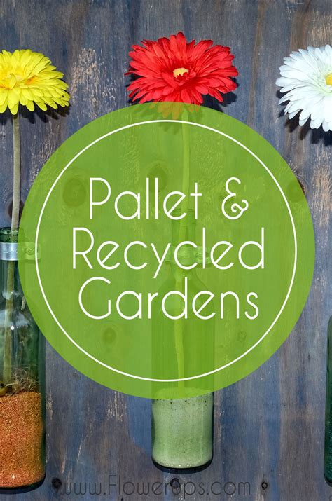 pop bottle planters diy creative recycled garden project