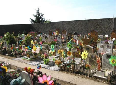 vasco le novit 224 di cimitero animali roma cimitero per animali cavalier king