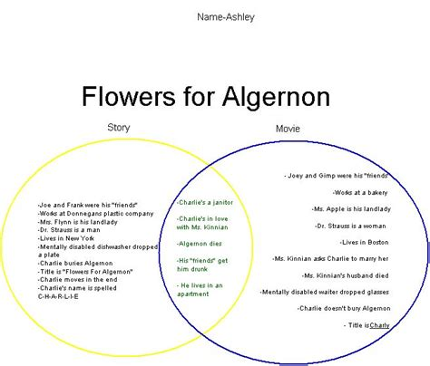 flowers for algernon book report worksheets flowers for algernon worksheets opossumsoft