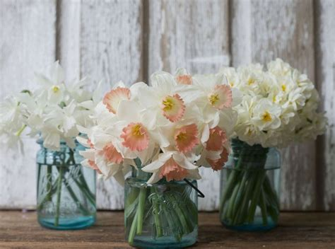 one dish at a time beautiful spring bouquet 17 best ideas about daffodil wedding on pinterest