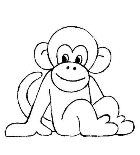 color monkey dibujos de animales 174 para colorear imprimir y pintar