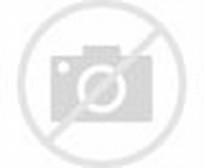 Flora Dan Fauna Indonesia