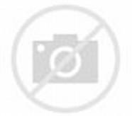 Tree Top Cartoon
