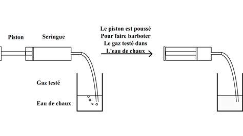 2 sle t test le test de reconnaissance du dioxyde de carbone
