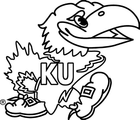 ku basketball coloring pages jayhawk clipart clipart best kansas my home now