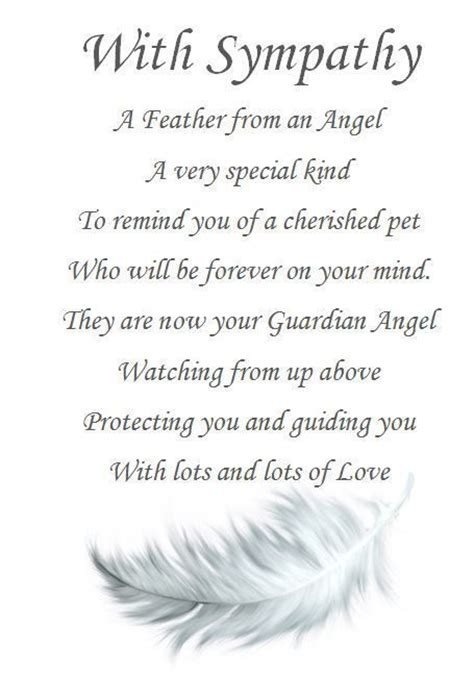 funeral comforting words best 25 pet sympathy quotes ideas on pinterest pet