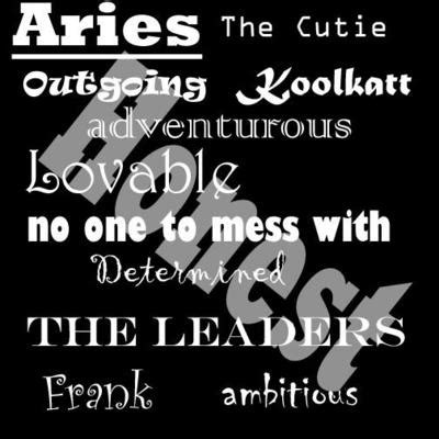 describe me i m an aries you have been warned