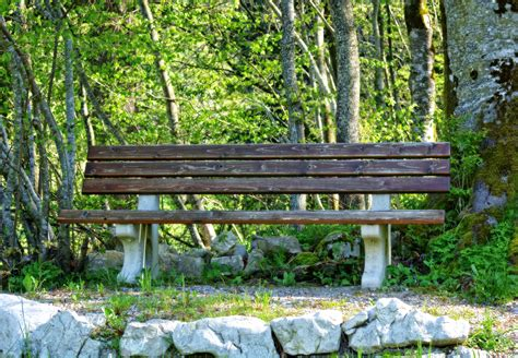 park bench photos bench in park 183 free stock photo