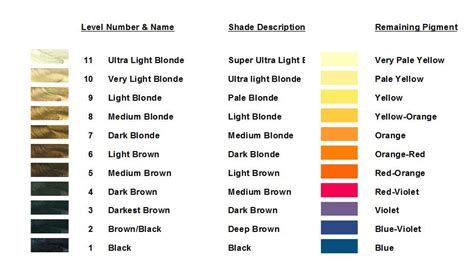 hair color theory altering pigment haircolor creations