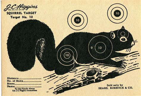 printable shooting targets squirrel squirrel targets pinterest