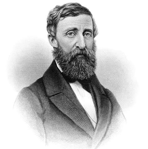 Henry David Thoreau Essays by Henry David Thoreau Essay On Civil Dailynewsreports578 Web Fc2