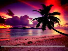 Colorful beach sunset hd walls find wallpapers