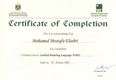 sle course completion certificate template 100 certificate template project completion