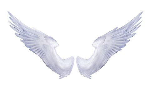 tattoo wings png white angel wings tattoo clipart best