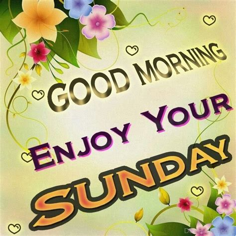 sunday good morning beautiful good morning wishes on sunday pictures images photos