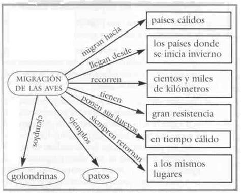 ejemplo de mapa semantico actividad mapa semantico mapa semantico fatima