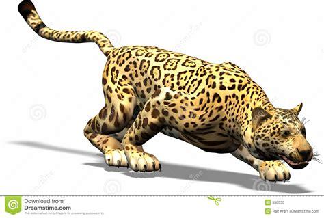 imagenes de garra jaguar jaguar op de jacht stock foto afbeelding 550530