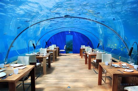 ithaa undersea restaurant ithaa one and only underwater restaurant in maldives